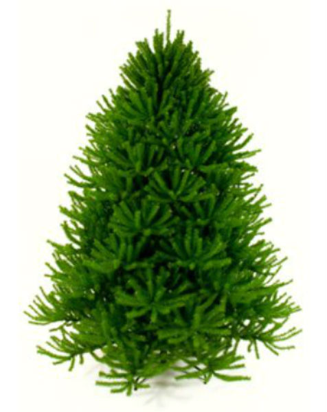 artificial christmas trees made in america price