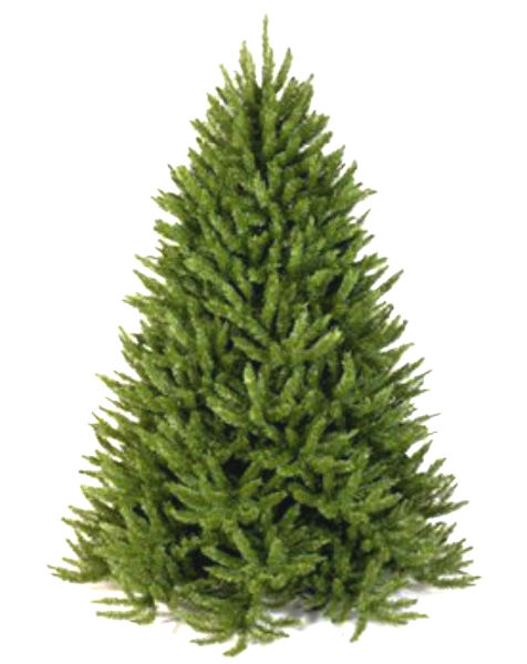 Frasier Fir Artificial Christmas Tree