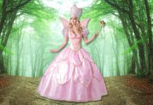 Princess Fairy Godmother Costume